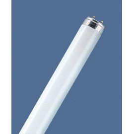 L 10W/827 T8 G13 WARM WHITE