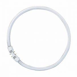 FC 22W/840 2GX13 T5 - COOL WHITE